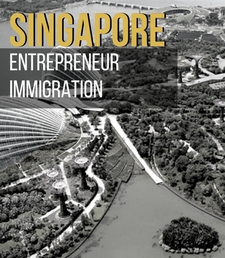 Singapore Intra- Company Transfer & Employment Pass – Path To the World Best Passport