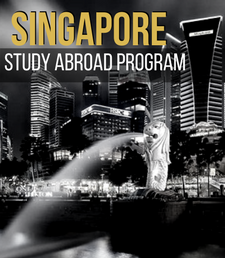 Singapore Young Learner Education, English, Chinese