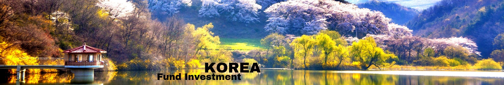 Korea, Fund Investment